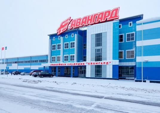 Ледовый комплекс